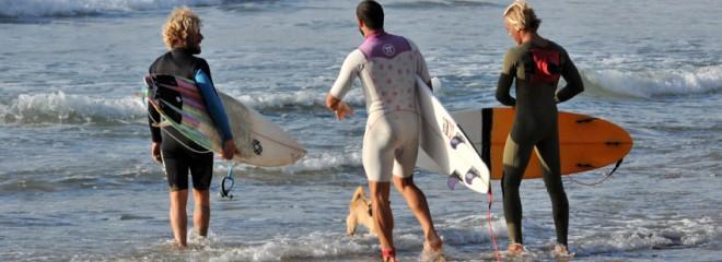 Protest Surfcenter Fuerteventura | Blog de surf para principiantes