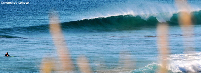 Protest Surfcenter Fuerteventura | Surf Fuerteventura